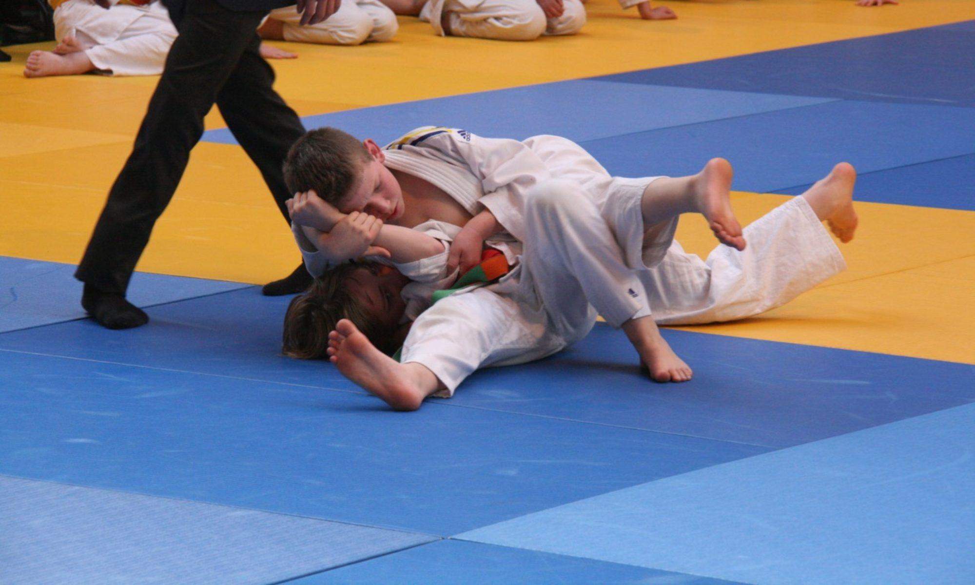 Judo D.A. Montesson